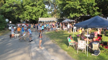 Zoostock 2015, Sports Zoo, Lansford, 9-7-2015 (2)