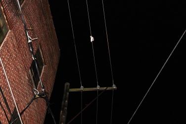 Balloons Cause Power Disruption, Rowe Street, Tamaqua, 10-16-2015 (2)