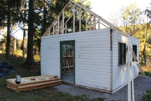 Building a Cabin from Camp Brainerd, Lower Owl Creek Reservoir, Tamaqua, 10-11-2015 (29)