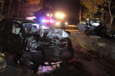 Driver Flees Head-On Crash During Following Police Pursuit in Ryan Township, 10-4-2015 (55)