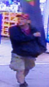 Hometown WalMart Theft Suspect, from Rush Twp Police, 10-14-2015 (2)