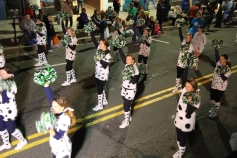 Tamaqua Lions Club Halloween Parade, Broad Street, Tamaqua, 10-27-2015 (342)