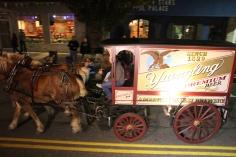 Tamaqua Lions Club Halloween Parade, Broad Street, Tamaqua, 10-27-2015 (650)
