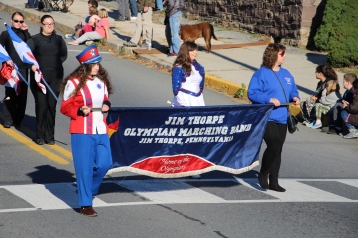 Carbon County Veterans Day Parade, Jim Thorpe, 11-8-2015 (50)
