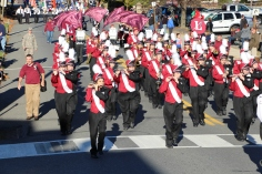Carbon County Veterans Day Parade, Jim Thorpe, 11-8-2015 (513)