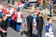 Carbon County Veterans Day Parade, Jim Thorpe, 11-8-2015 (55)
