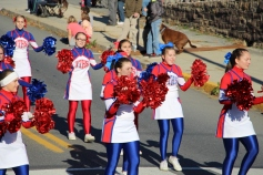 Carbon County Veterans Day Parade, Jim Thorpe, 11-8-2015 (89)