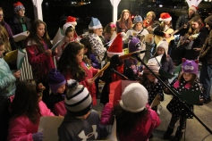 Christmas in the Park, via Lansford Alive, Kennedy Park, Lansford, 11-28-2015 (131)