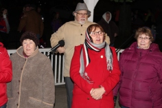 Christmas in the Park, via Lansford Alive, Kennedy Park, Lansford, 11-28-2015 (171)