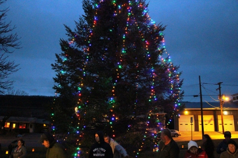 Christmas in the Park, via Lansford Alive, Kennedy Park, Lansford, 11-28-2015 (18)