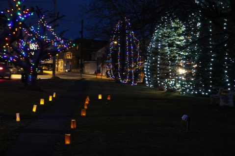 Christmas in the Park, via Lansford Alive, Kennedy Park, Lansford, 11-28-2015 (41)
