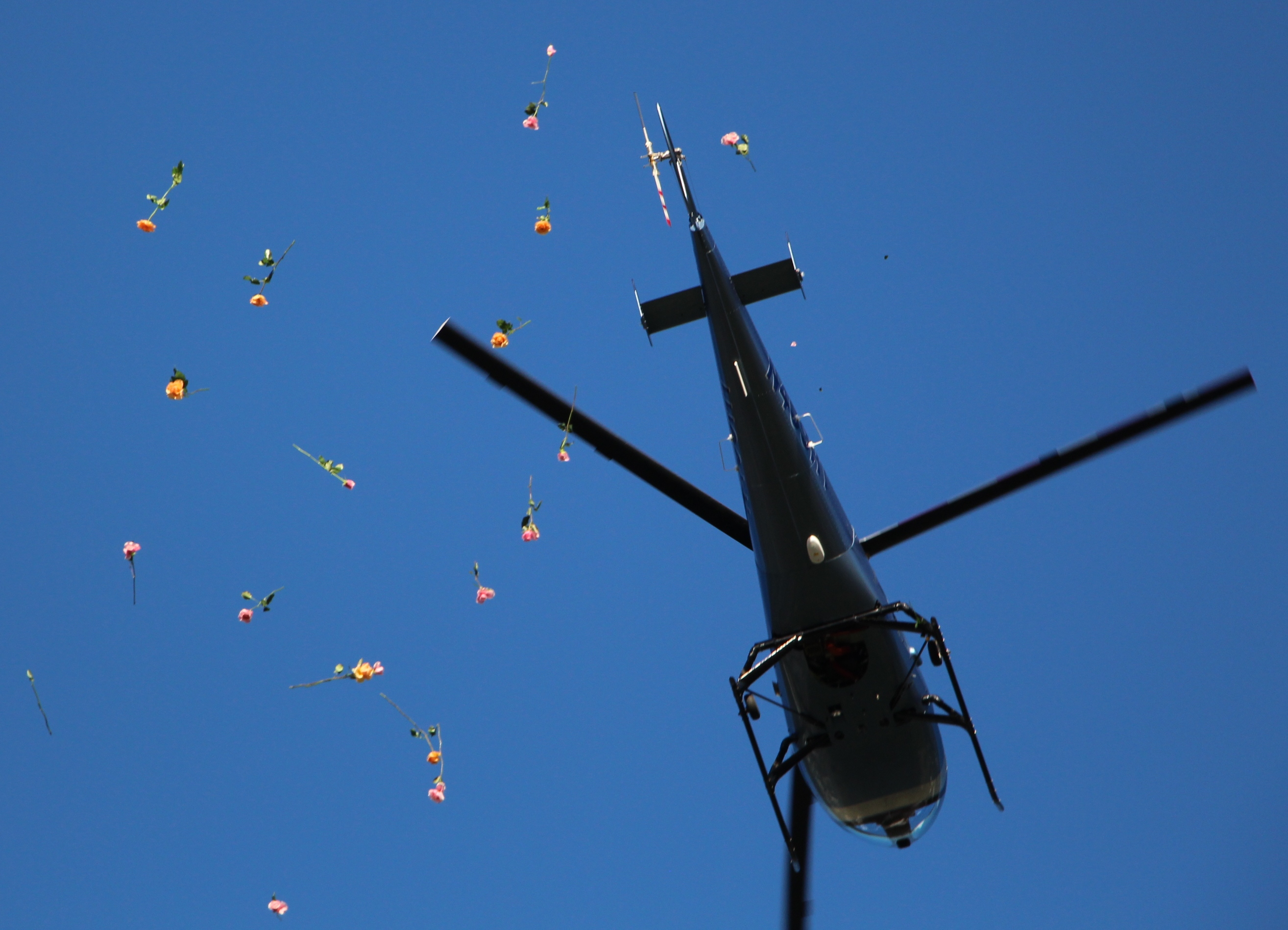 SHOWER OF ROSES HELD IN NEW COLUMBUS; 300 ROSES DROPPED ... - photo#19