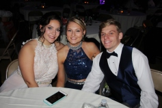 Tamaqua High School Winter Formal, Tamaqua Elementary School, Tamaqua, 11-28-2015 (19)