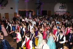 Tamaqua High School Winter Formal, Tamaqua Elementary School, Tamaqua, 11-28-2015 (85)
