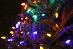 Nesquehoning Holiday Tree Lighting, via Lions Club, Nesquehoning, 12-5-2015 (36)