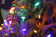 Nesquehoning Holiday Tree Lighting, via Lions Club, Nesquehoning, 12-5-2015 (37)