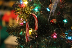Tree Festival, Voting, Tamaqua Community Arts Center, Tamaqua, 12-4-2015 (58)