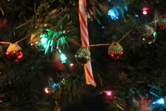Tree Festival, Voting, Tamaqua Community Arts Center, Tamaqua, 12-4-2015 (59)