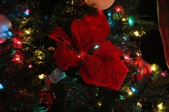 Tree Festival, Voting, Tamaqua Community Arts Center, Tamaqua, 12-4-2015 (71)