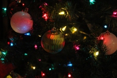 Tree Festival, Voting, Tamaqua Community Arts Center, Tamaqua, 12-4-2015 (72)