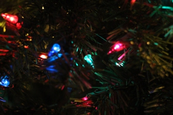 Tree Festival, Voting, Tamaqua Community Arts Center, Tamaqua, 12-4-2015 (80)
