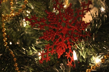 Tree Festival, Voting, Tamaqua Community Arts Center, Tamaqua, 12-4-2015 (81)