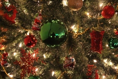 Tree Festival, Voting, Tamaqua Community Arts Center, Tamaqua, 12-4-2015 (85)