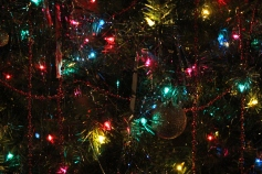 Tree Festival, Voting, Tamaqua Community Arts Center, Tamaqua, 12-4-2015 (86)
