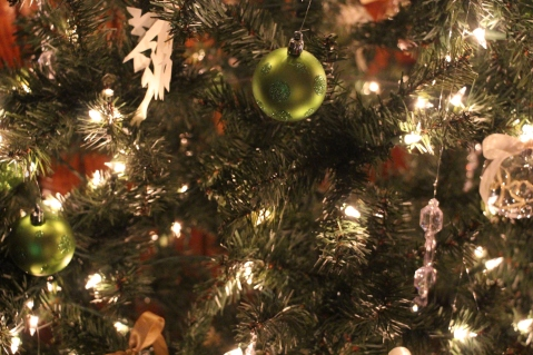 Tree Festival, Voting, Tamaqua Community Arts Center, Tamaqua, 12-4-2015 (90)
