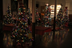Tree Festival, Voting, Tamaqua Community Arts Center, Tamaqua, 12-4-2015 (97)