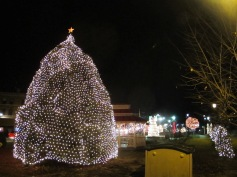 Tree Lighting, Spirit of Christmas Festival, Depot Square Park, Tamaqua, 12-6-2015 (59)