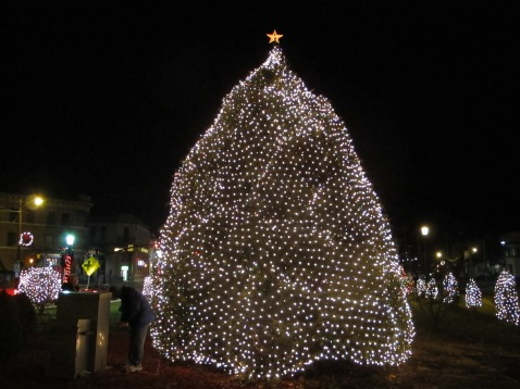 Tree Lighting, Spirit of Christmas Festival, Depot Square Park, Tamaqua, 12-6-2015 (60)