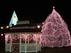 Tree Lighting, Spirit of Christmas Festival, Depot Square Park, Tamaqua, 12-6-2015 (62)