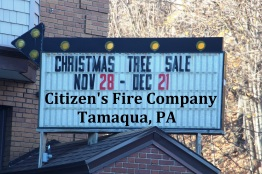 Winter Christmas Tree Sale, Citizen's Fire Company, Tamaqua, 2015