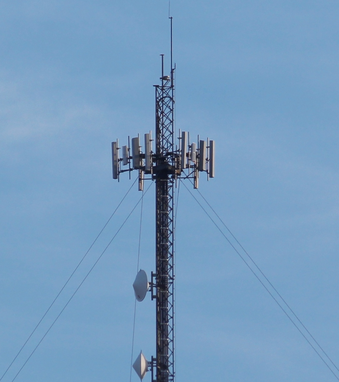 Info about cell tower southeast of Tamaqua