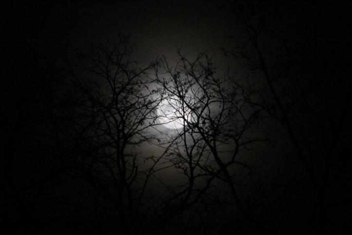 full-moon-over-tamaqua-1-13-2017