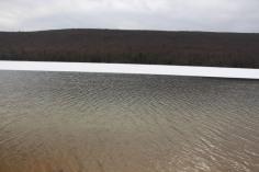 sjra-polar-plunge-mauch-chunk-lake-state-park-jim-thorpe-1-28-2017-3