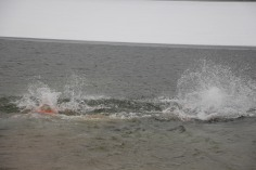sjra-polar-plunge-mauch-chunk-lake-state-park-jim-thorpe-1-28-2017-381