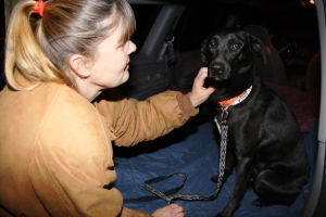 tamaqua-area-animal-rescue-transport-cracker-barrel-frackville-1-14-2012-78