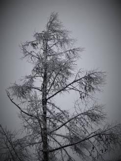 winter-ice-photos-via-john-bumberger-locust-lake-barnesville-1-24-2017-4