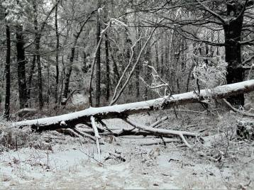 winter-ice-photos-via-john-bumberger-locust-lake-barnesville-1-24-2017-5