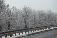 winter-wonderland-ice-on-trees-along-sr54-and-interstate-81-barnesville-1-24-2017-16