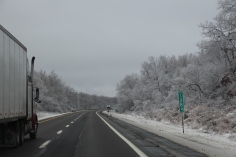 winter-wonderland-ice-on-trees-along-sr54-and-interstate-81-barnesville-1-24-2017-28