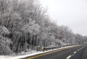 winter-wonderland-ice-on-trees-along-sr54-and-interstate-81-barnesville-1-24-2017-30b