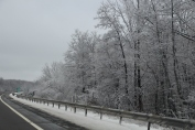 winter-wonderland-ice-on-trees-along-sr54-and-interstate-81-barnesville-1-24-2017-32