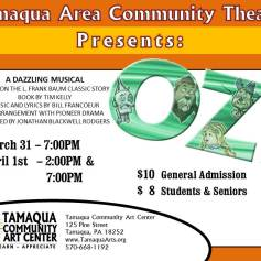 3-31-4-1-2017-oz-musical-for-kids-show-at-tamaqua-community-art-center-tamaqua