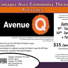 6-9-10-2017-avenue-q-shows-tamaqua-community-art-center-tamaqua