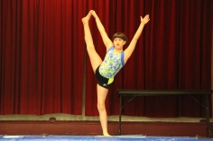 talent-show-st-jerome-regional-school-tamaqua-2-2-2017-11