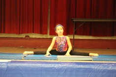 talent-show-st-jerome-regional-school-tamaqua-2-2-2017-22
