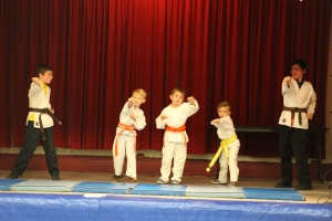 talent-show-st-jerome-regional-school-tamaqua-2-2-2017-31
